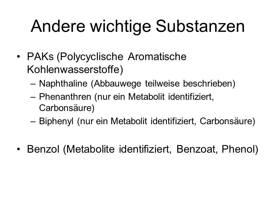 Andere wichtige Substanzen PAKs (Polycyclische Aromatische Kohlenwasserstoffe) –Naphthaline (Abbauwege teilweise beschrieben) –Phenanthren (nur ein Me
