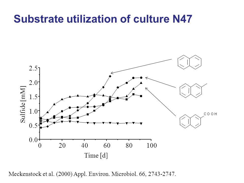 Meckenstock et al. (2000) Appl. Environ. Microbiol. 66, 2743-2747. Substrate utilization of culture N47