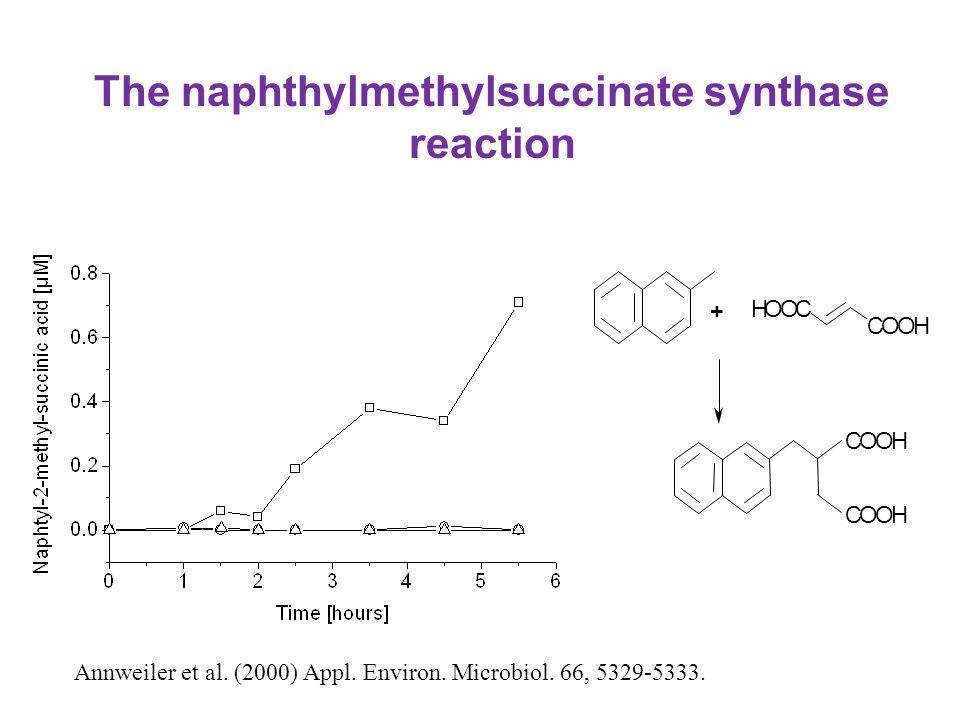 The naphthylmethylsuccinate synthase reaction Annweiler et al. (2000) Appl. Environ. Microbiol. 66, 5329-5333. + COOH COOH HOOC COOH