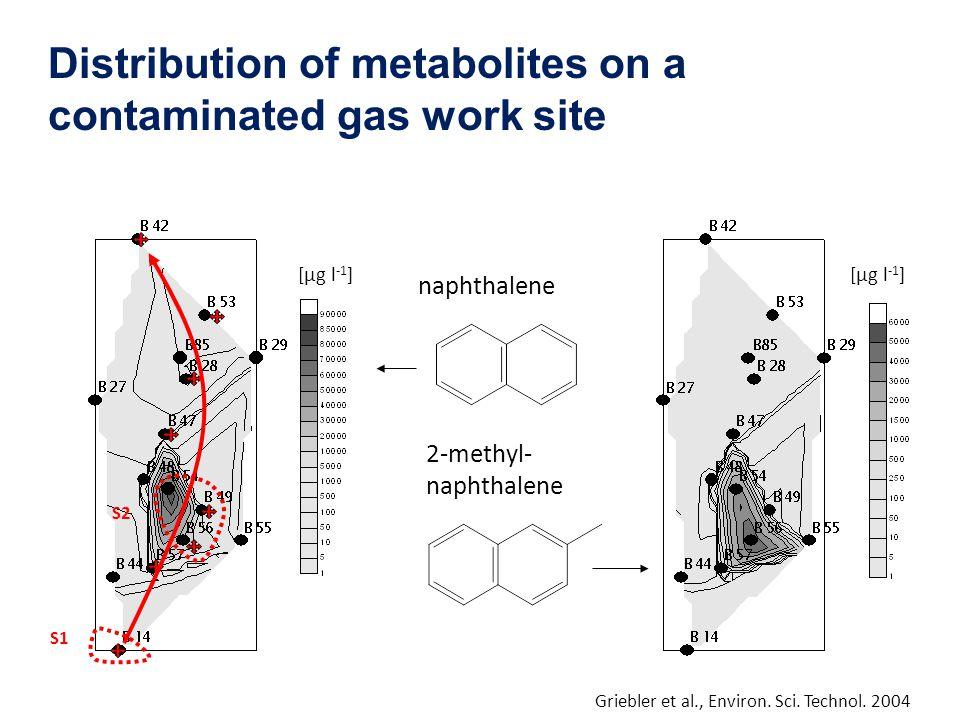 Distribution of metabolites on a contaminated gas work site naphthalene 2-methyl- naphthalene S1 S2 [µg l -1 ] Griebler et al., Environ. Sci. Technol.
