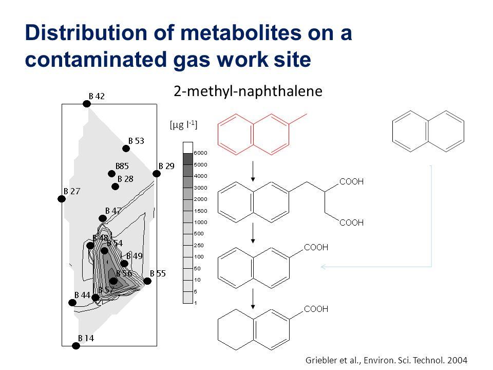 2-methyl-naphthalene [µg l -1 ] Griebler et al., Environ. Sci. Technol. 2004 Distribution of metabolites on a contaminated gas work site