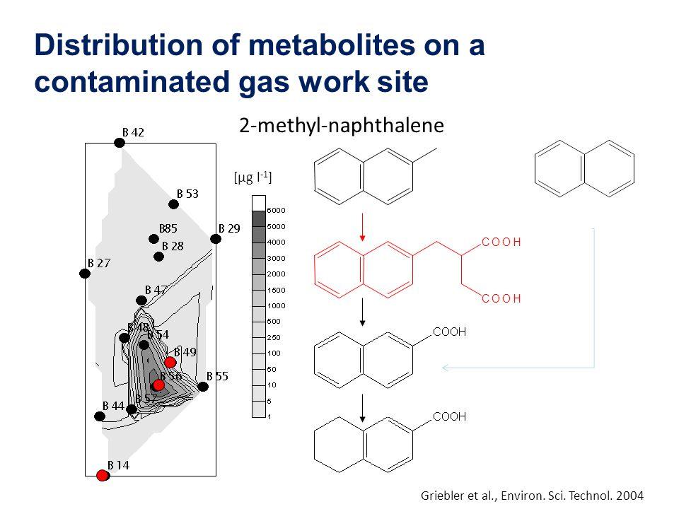 2-methyl-naphthalene COOH COOH [µg l -1 ] Griebler et al., Environ. Sci. Technol. 2004 Distribution of metabolites on a contaminated gas work site