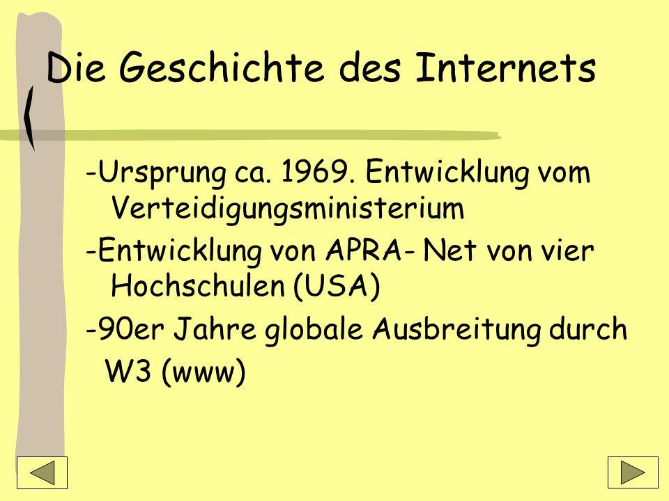 Geschichte & Aufbau des Internets Denise Freiheit /Katharina Hartwich