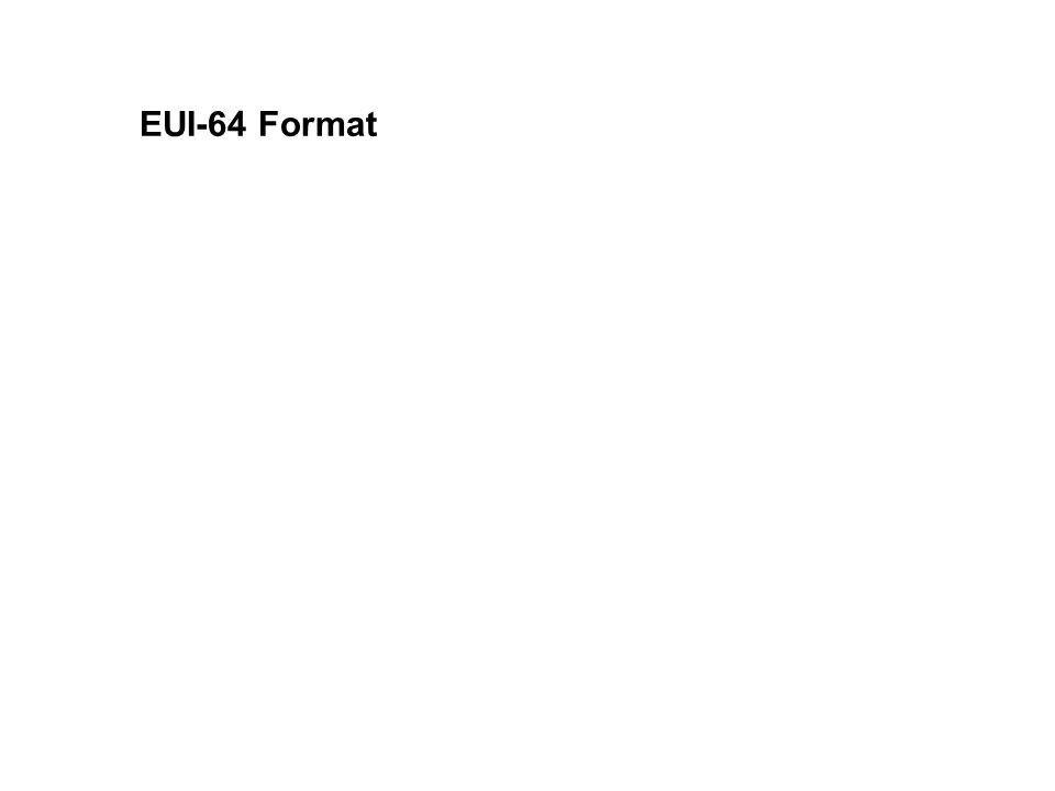 EUI-64 Format