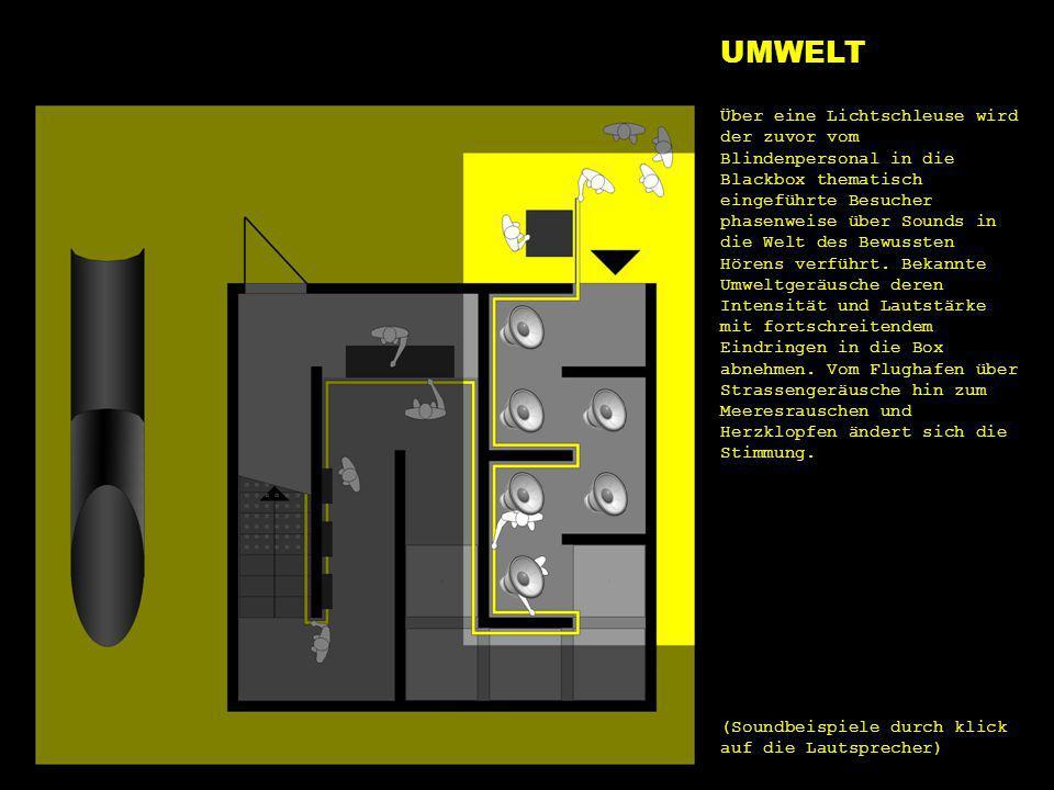 e1 umwelt UMWELT Über eine Lichtschleuse wird der zuvor vom Blindenpersonal in die Blackbox thematisch eingeführte Besucher phasenweise über Sounds in