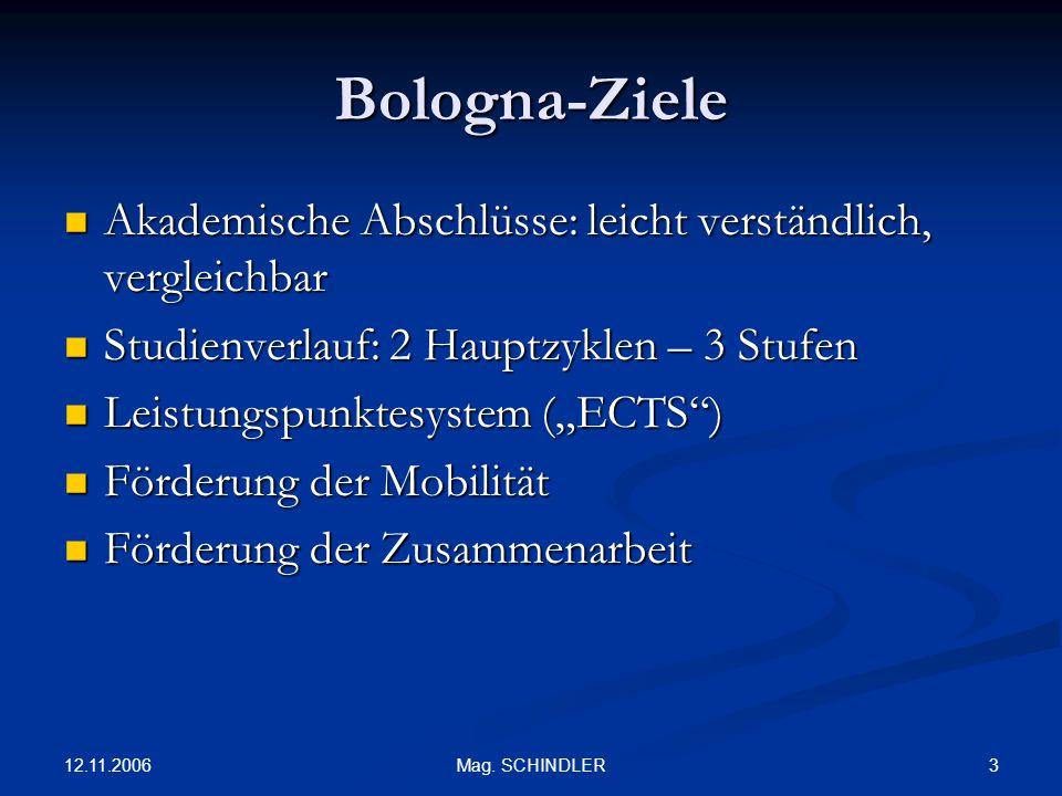 12.11.2006 3Mag. SCHINDLER Bologna-Ziele Akademische Abschlüsse: leicht verständlich, vergleichbar Akademische Abschlüsse: leicht verständlich, vergle