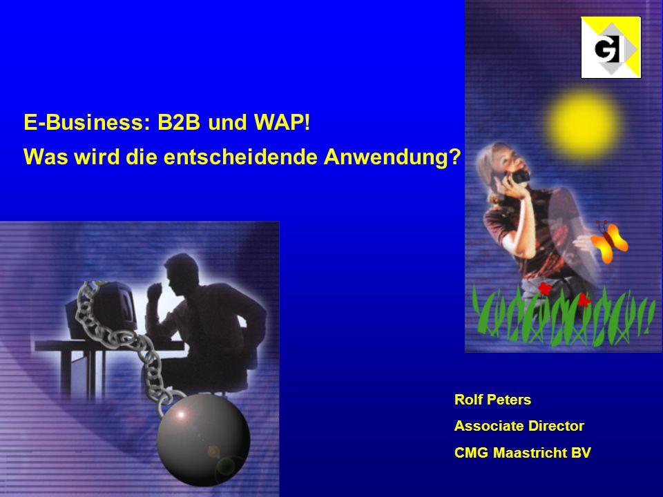 E-Business: B2B und WAP. Was wird die entscheidende Anwendung.