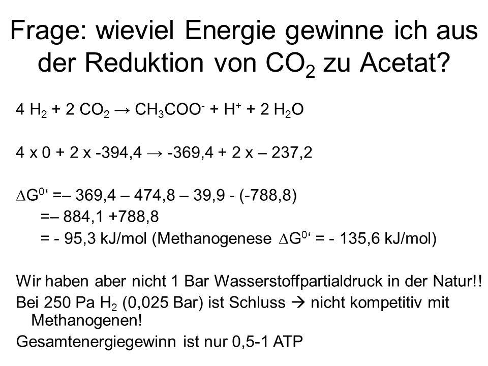 Frage: wieviel Energie gewinne ich aus der Reduktion von CO 2 zu Acetat? 4 H 2 + 2 CO 2 → CH 3 COO - + H + + 2 H 2 O 4 x 0 + 2 x -394,4 → -369,4 + 2 x