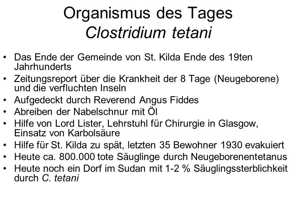 Organismus des Tages Clostridium tetani Das Ende der Gemeinde von St. Kilda Ende des 19ten Jahrhunderts Zeitungsreport über die Krankheit der 8 Tage (
