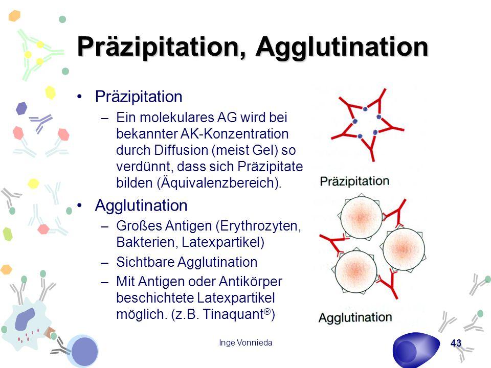 Inge Vonnieda 43 Präzipitation, Agglutination Präzipitation –Ein molekulares AG wird bei bekannter AK-Konzentration durch Diffusion (meist Gel) so verdünnt, dass sich Präzipitate bilden (Äquivalenzbereich).