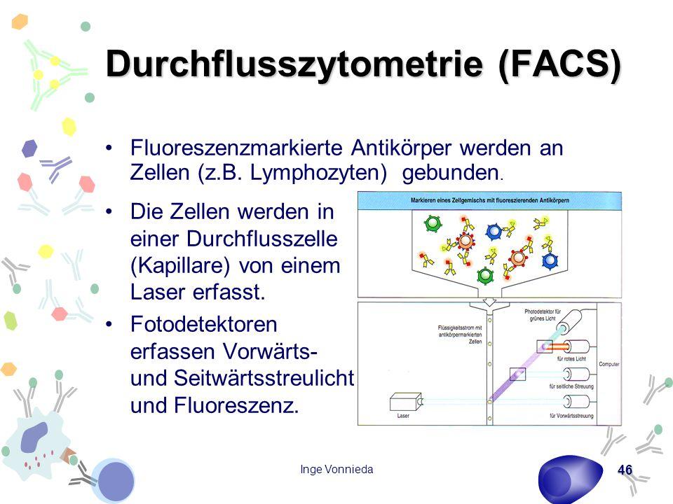 Inge Vonnieda 46 Durchflusszytometrie (FACS) Die Zellen werden in einer Durchflusszelle (Kapillare) von einem Laser erfasst. Fotodetektoren erfassen V