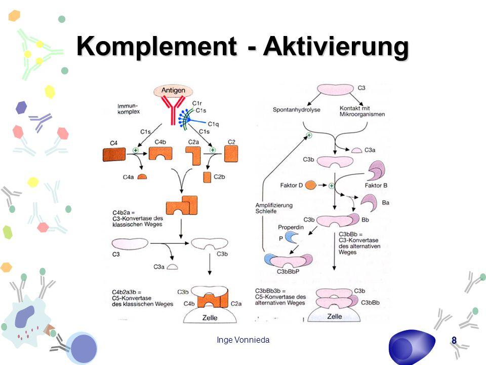 Inge Vonnieda 19 Immunglobulinklassen – IgG 80 % aller Immunglobuline 8 – 18 g/l im Serum, die gleiche Menge im extravasalen Raum 4 Subklassen (IgG1 – 4) Komplementbindungsstelle am C H2 bei IgG1, 2, 3 Bindung an die Fc-Rezeptoren der Makrophagen (IgG1, 3) Erscheint bei einer primären Immunreaktion nach einigen Tagen IgG1: 65 – 70%IgG2: 20 – 28%IgG3: 4 – 8%IgG4: 2 – 4%