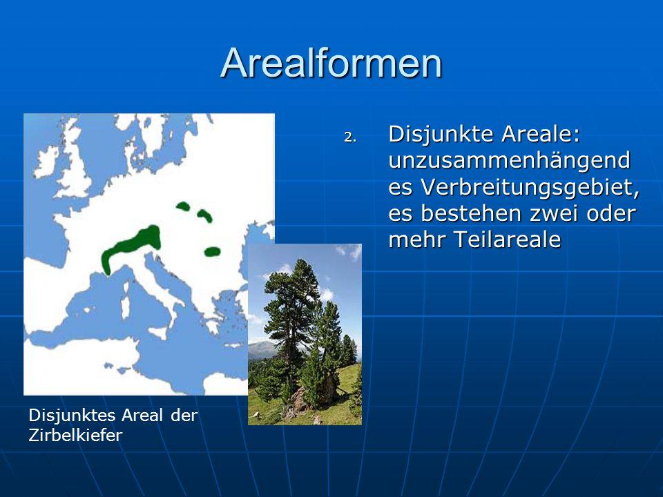 Arealformen 2. Disjunkte Areale: unzusammenhängend es Verbreitungsgebiet, es bestehen zwei oder mehr Teilareale Disjunktes Areal der Zirbelkiefer