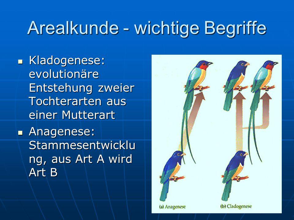 Arealkunde - wichtige Begriffe Kladogenese: evolutionäre Entstehung zweier Tochterarten aus einer Mutterart Kladogenese: evolutionäre Entstehung zweie
