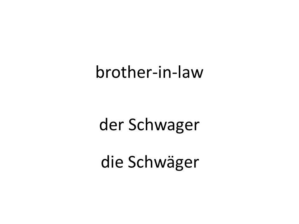 brother-in-law der Schwager die Schwäger