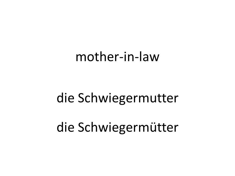 mother-in-law die Schwiegermutter die Schwiegermütter