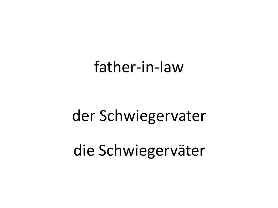 father-in-law der Schwiegervater die Schwiegerväter