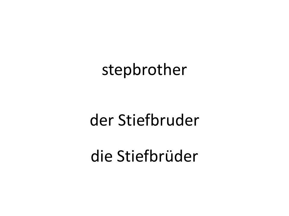 stepbrother der Stiefbruder die Stiefbrüder