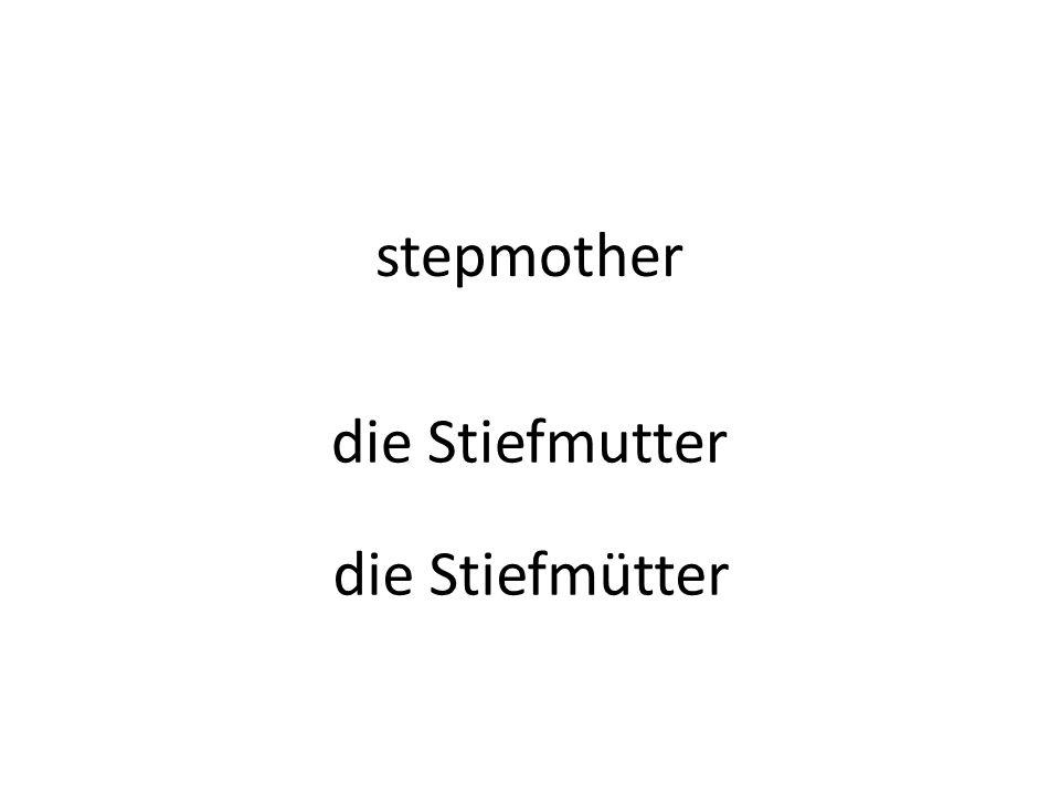 stepmother die Stiefmutter die Stiefmütter