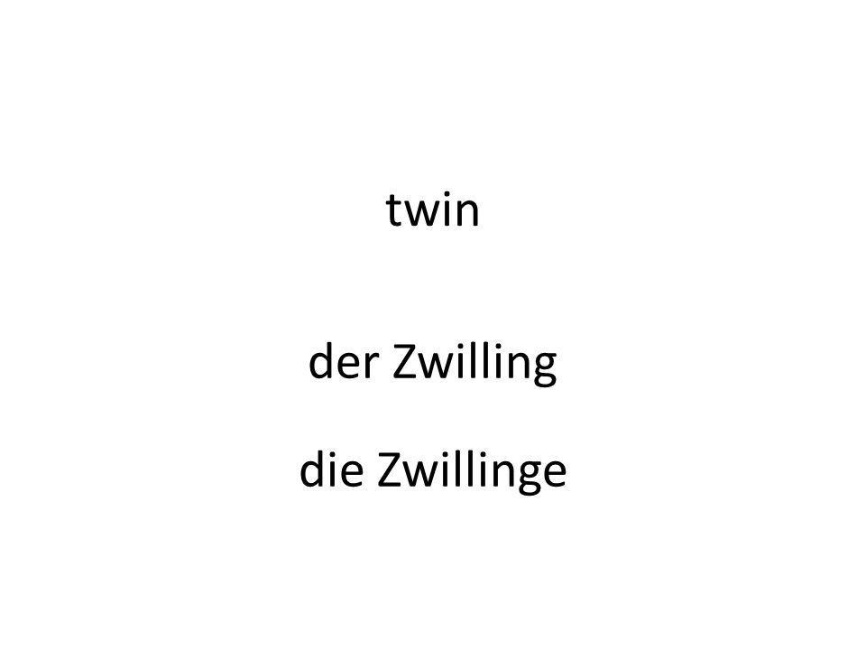 twin der Zwilling die Zwillinge