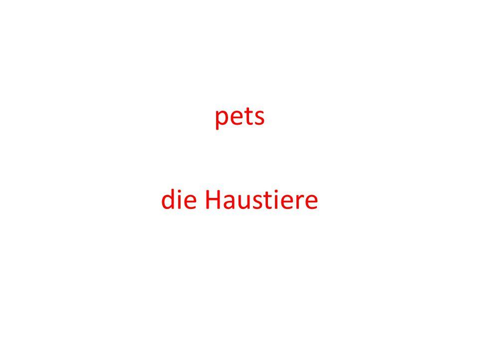 pets die Haustiere