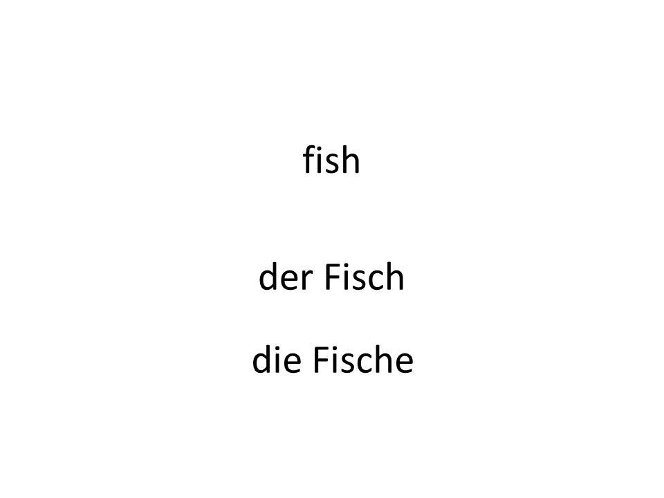 fish der Fisch die Fische