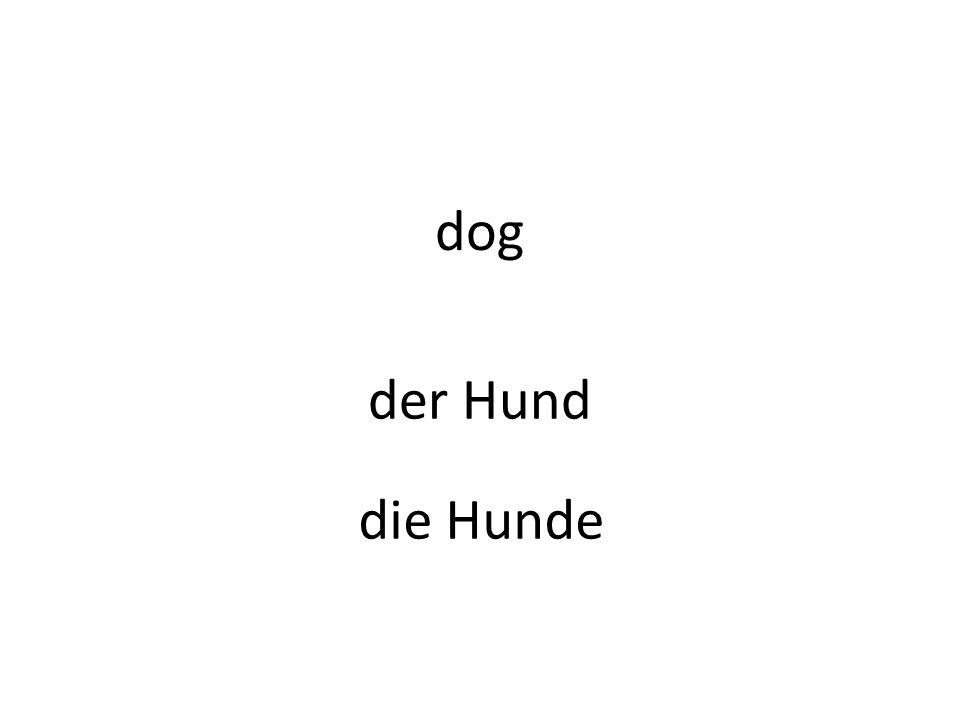 dog der Hund die Hunde