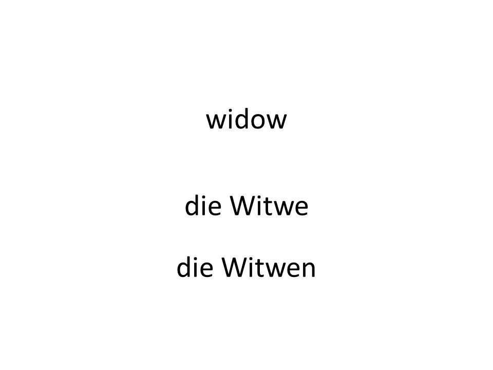 widow die Witwe die Witwen