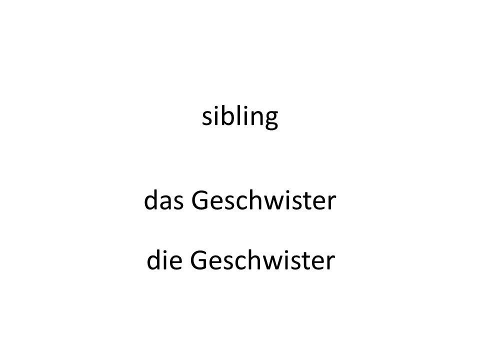 sibling das Geschwister die Geschwister