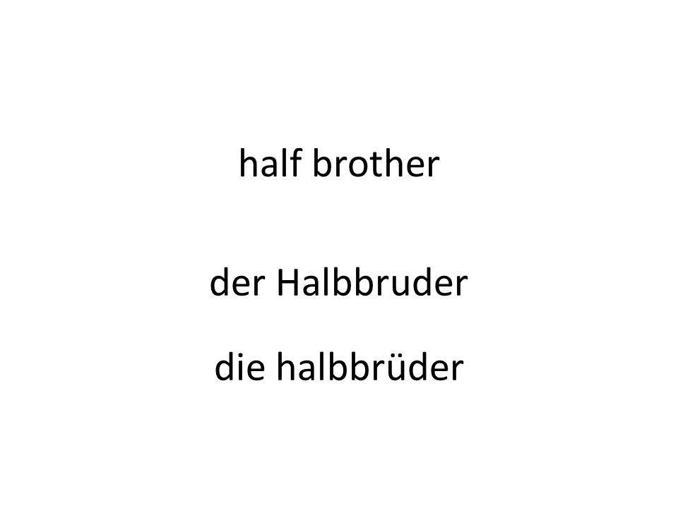 half brother der Halbbruder die halbbrüder