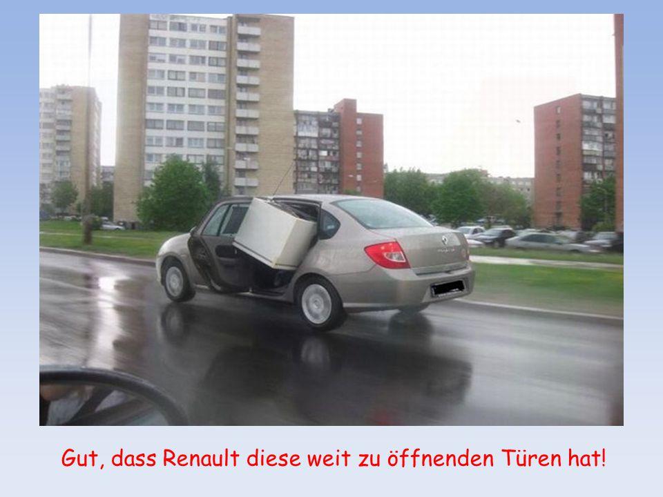"""Tierisches Navi: """"Wenn möglich bitte wenden!"""""""