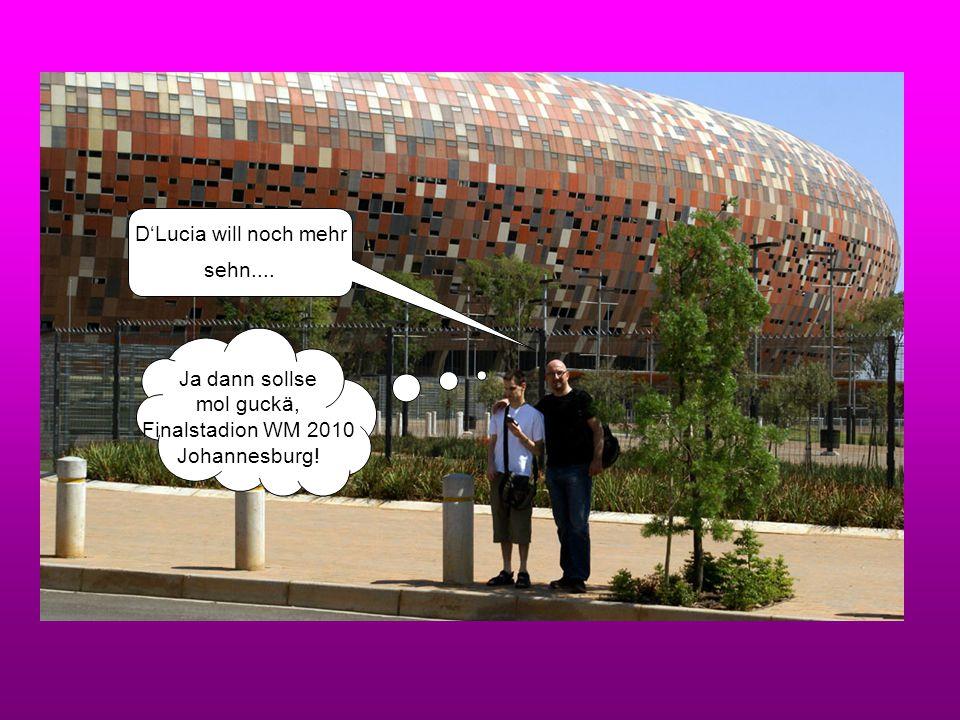 D'Lucia will noch mehr sehn.... Ja dann sollse mol guckä, Finalstadion WM 2010 Johannesburg!