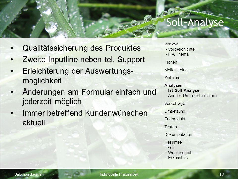 Salomon BaumannIndividuelle Praxisarbeit 12 Soll-Analyse Qualitätssicherung des Produktes Zweite Inputline neben tel. Support Erleichterung der Auswer