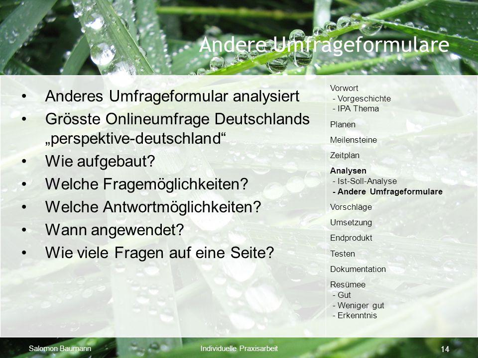 """Salomon BaumannIndividuelle Praxisarbeit 14 Andere Umfrageformulare Anderes Umfrageformular analysiert Grösste Onlineumfrage Deutschlands """"perspektive-deutschland Wie aufgebaut."""