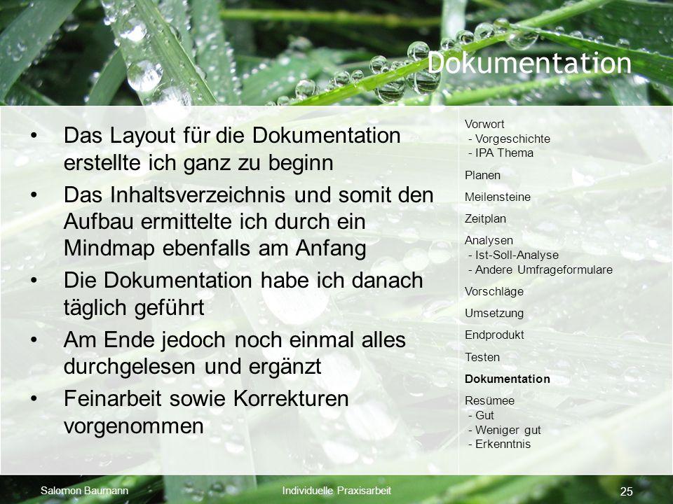 Salomon BaumannIndividuelle Praxisarbeit 25 Dokumentation Das Layout für die Dokumentation erstellte ich ganz zu beginn Das Inhaltsverzeichnis und som