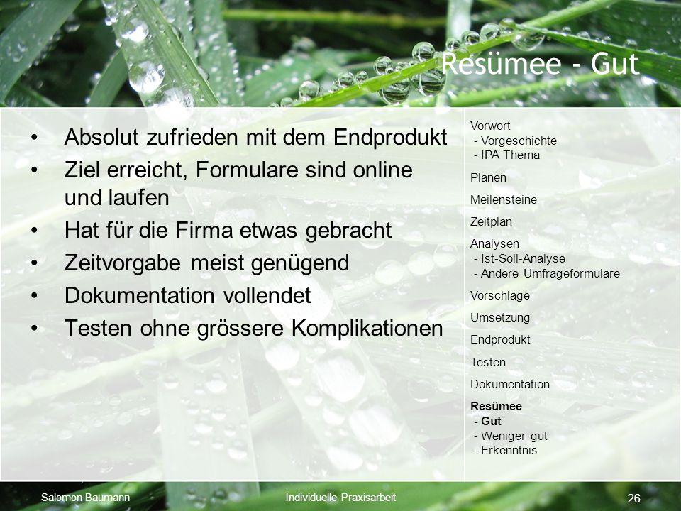 Salomon BaumannIndividuelle Praxisarbeit 26 Resümee - Gut Absolut zufrieden mit dem Endprodukt Ziel erreicht, Formulare sind online und laufen Hat für