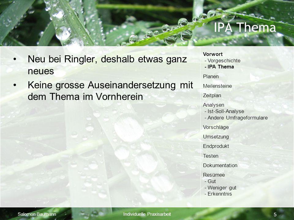 Salomon BaumannIndividuelle Praxisarbeit 5 IPA Thema Neu bei Ringler, deshalb etwas ganz neues Keine grosse Auseinandersetzung mit dem Thema im Vornhe