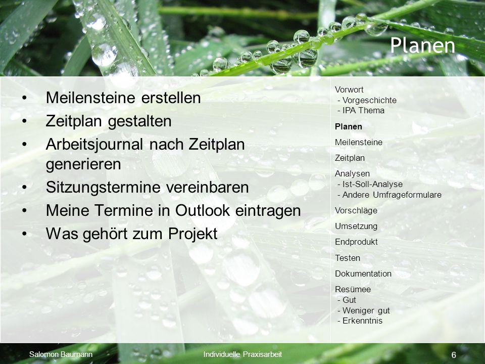Salomon BaumannIndividuelle Praxisarbeit 6 Planen Meilensteine erstellen Zeitplan gestalten Arbeitsjournal nach Zeitplan generieren Sitzungstermine ve