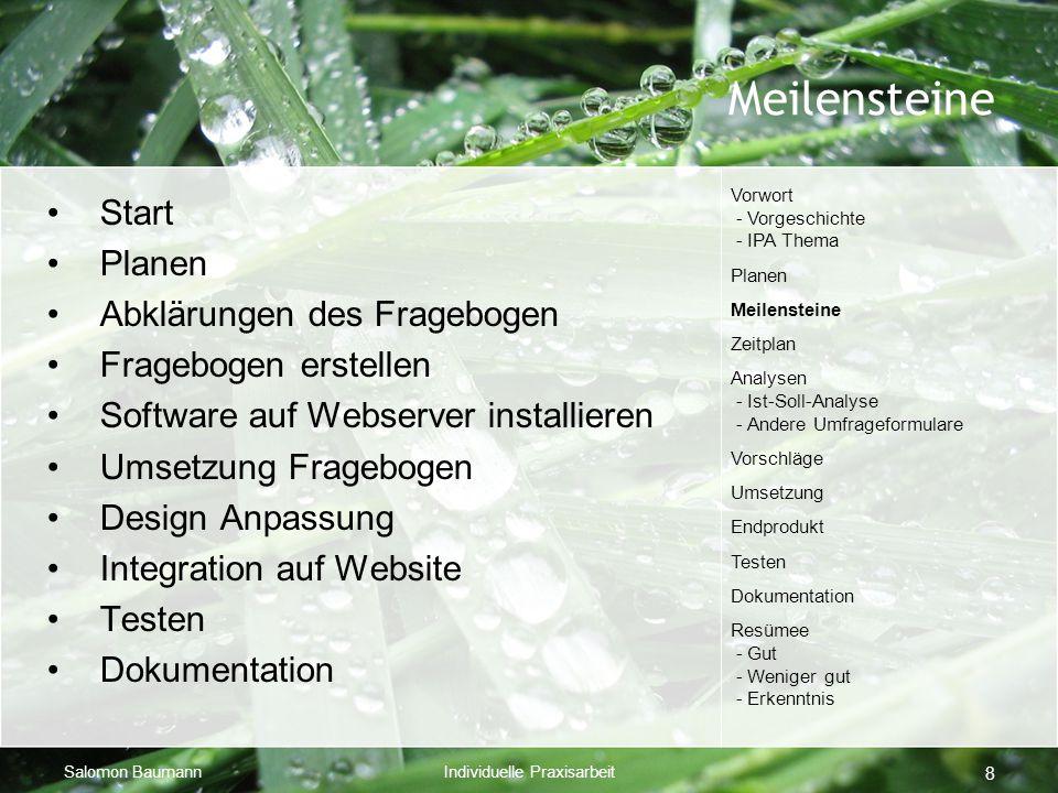 Salomon BaumannIndividuelle Praxisarbeit 8 Meilensteine Start Planen Abklärungen des Fragebogen Fragebogen erstellen Software auf Webserver installier