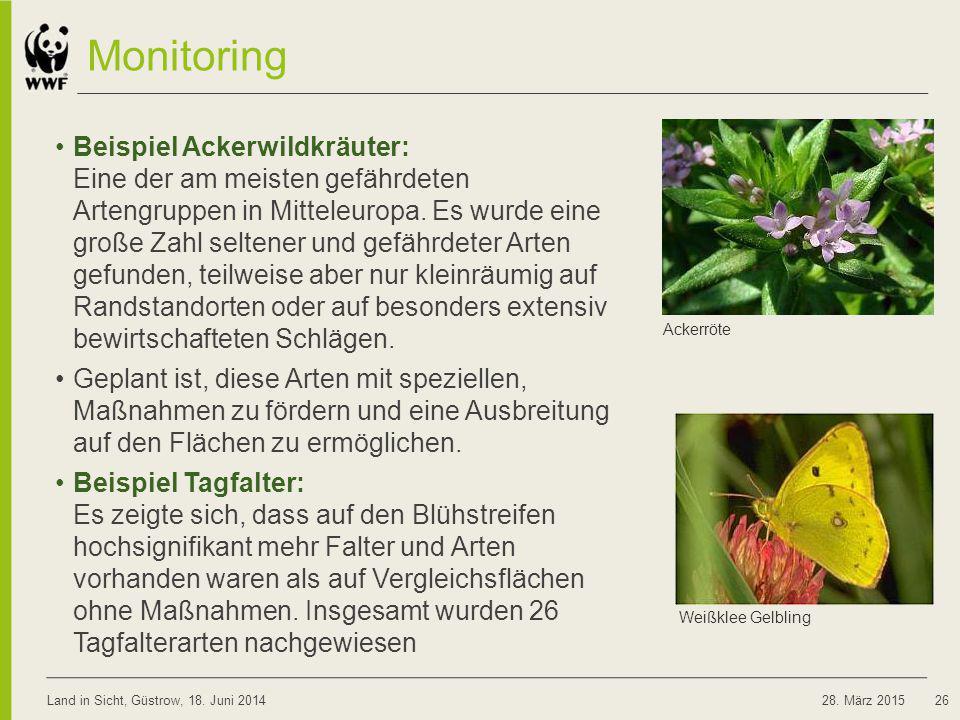 Monitoring Beispiel Ackerwildkräuter: Eine der am meisten gefährdeten Artengruppen in Mitteleuropa. Es wurde eine große Zahl seltener und gefährdeter