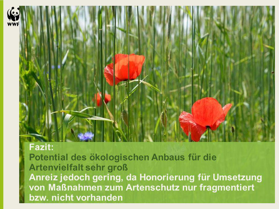 Fazit: Potential des ökologischen Anbaus für die Artenvielfalt sehr groß Anreiz jedoch gering, da Honorierung für Umsetzung von Maßnahmen zum Artensch