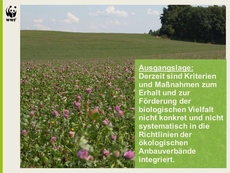 Ausgangslage: Derzeit sind Kriterien und Maßnahmen zum Erhalt und zur Förderung der biologischen Vielfalt nicht konkret und nicht systematisch in die