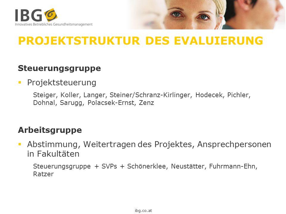 PROJEKTSTRUKTUR DES EVALUIERUNG Steuerungsgruppe  Projektsteuerung Steiger, Koller, Langer, Steiner/Schranz-Kirlinger, Hodecek, Pichler, Dohnal, Saru