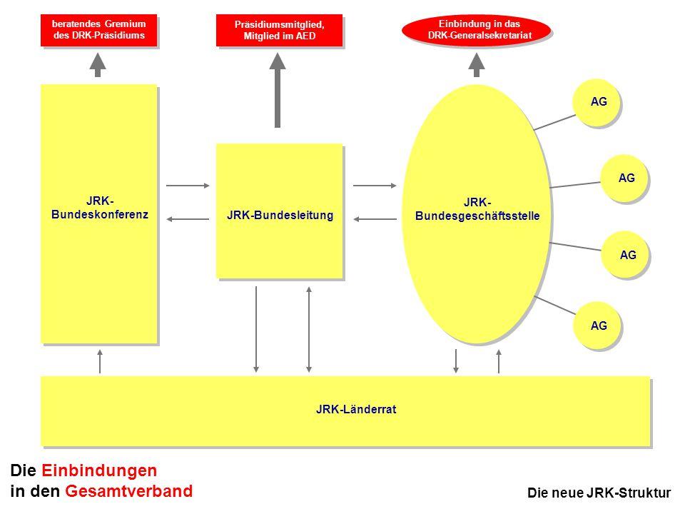 16 JRK-Bundesausschuss November 2005 in Kassel JRK-Länderrat JRK- Bundeskonferenz JRK- Bundesgeschäftsstelle AG Die neue JRK-Struktur JRK-Bundesleitun