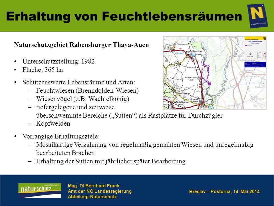 Břeclav – Postorna, 14. Mai 2014 Erhaltung von Feuchtlebensräumen Mag. DI Bernhard Frank Amt der NÖ Landesregierung Abteilung Naturschutz Naturschutzg