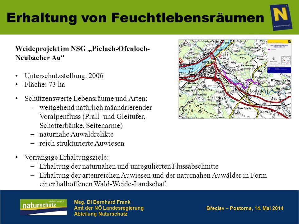 Břeclav – Postorna, 14. Mai 2014 Erhaltung von Feuchtlebensräumen Mag. DI Bernhard Frank Amt der NÖ Landesregierung Abteilung Naturschutz Weideprojekt