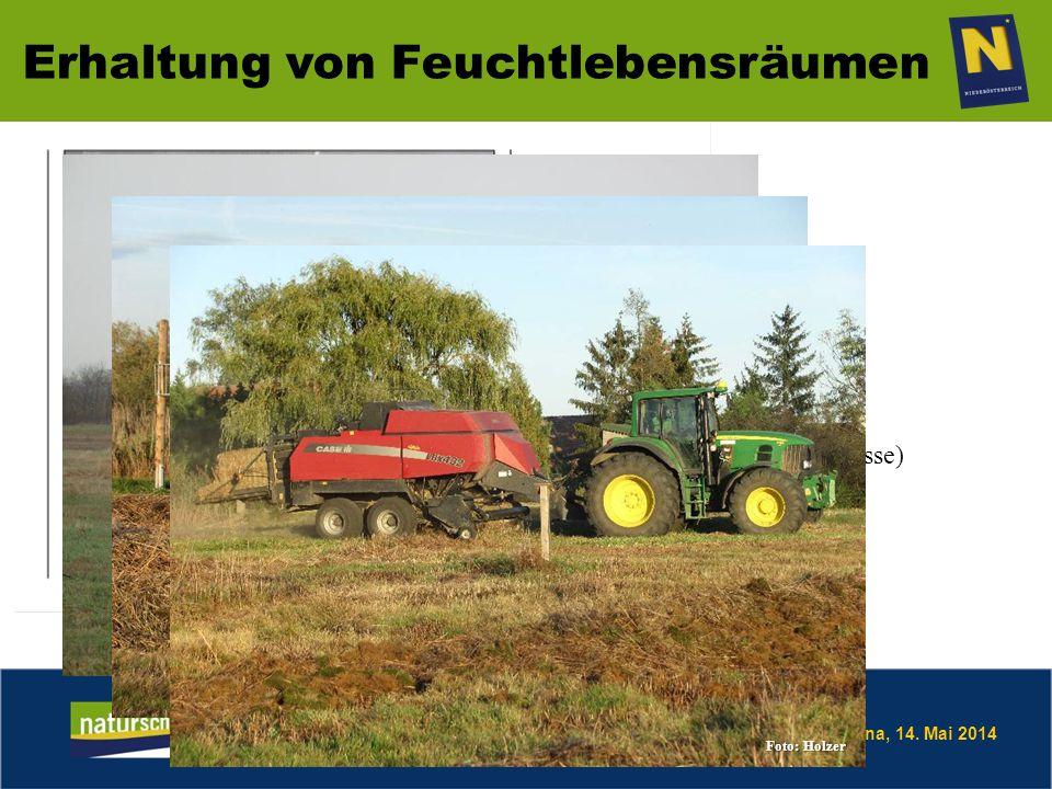 Mag.DI Bernhard Frank Amt der NÖ Landesregierung Abteilung Naturschutz Břeclav – Postorna, 14.
