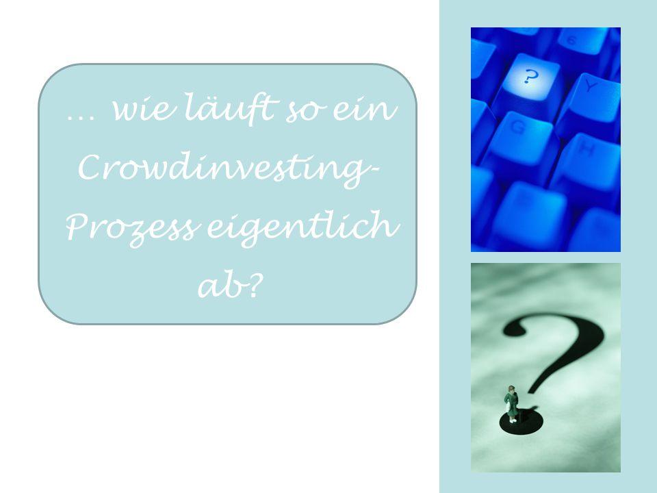 … wie läuft so ein Crowdinvesting- Prozess eigentlich ab?