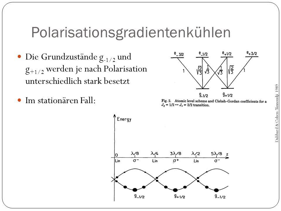 Polarisationsgradientenkühlen Die Grundzustände g -1/2 und g +1/2 werden je nach Polarisation unterschiedlich stark besetzt Im stationären Fall: Dalib