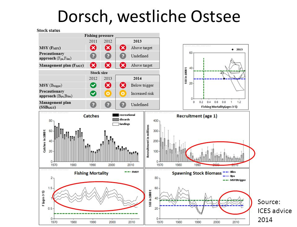 Dorsch, westliche Ostsee Source: ICES advice 2014